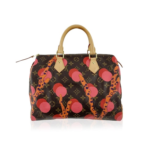 Louis Vuitton Limited Edition Ramages Monogram Speedy 30 Bag